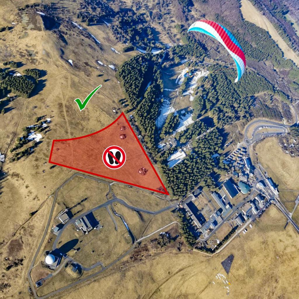 Wiesenbrüter-Schutzzone